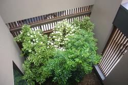 2階デッキテラスから中庭を見下ろす
