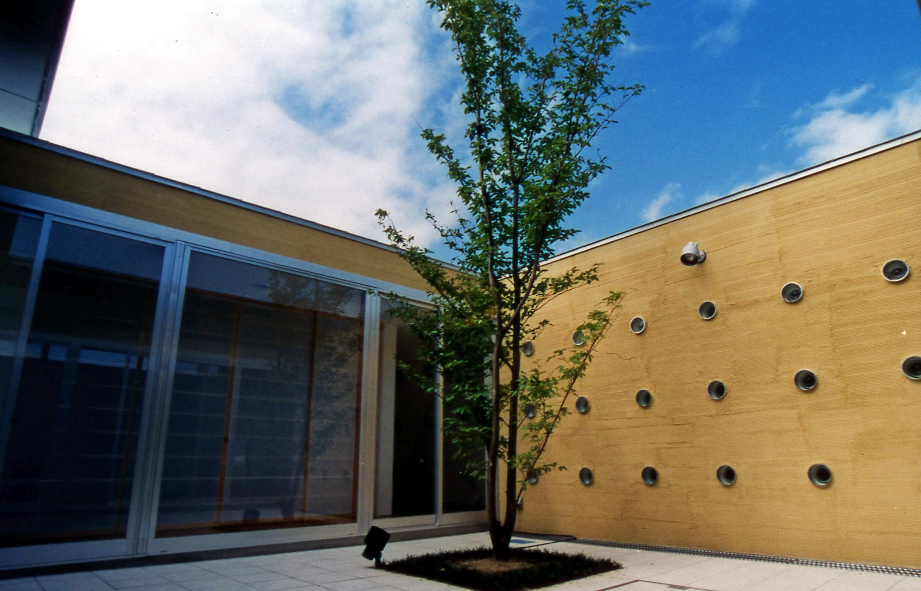 空を独り占め出来る中庭とシンボルツリーのヒメシャラ