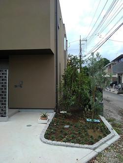 玄関アプローチの植栽