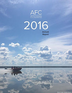 2016 Annual Report - Published Version_P