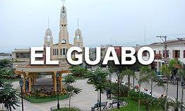 EL GUABO.jpg