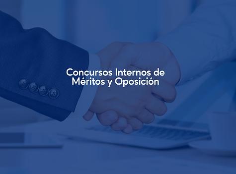 MERITO Y OPOSICION.png