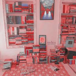 bookshelf aesthetic 08.01.2021