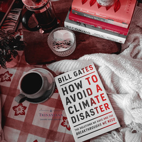 How to avoid a climate disaster by Bill Gates : a book review