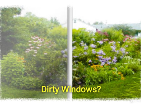 How often and when should I get my windows cleaned?
