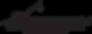 Airborn Logo Black_2x.png