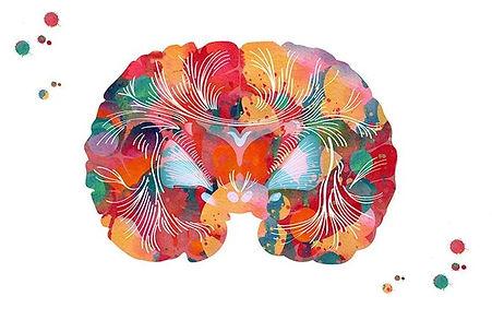 Inner Level concussion management.JPG