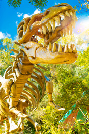 42-dinossauro.jpg