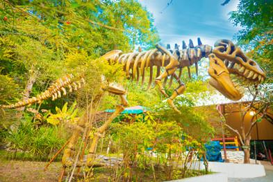 43-dinossauro.jpg