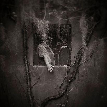 Anne+in+the+Window.jpg