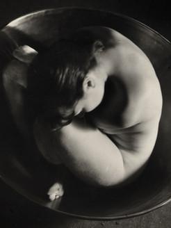ruth-bernhard-embryo-1934-via-artnet.jpg