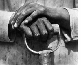 tina-modotti-photographer-revolutionary-
