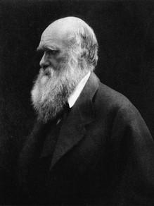 454px-Charles_Darwin_by_Julia_Margaret_C