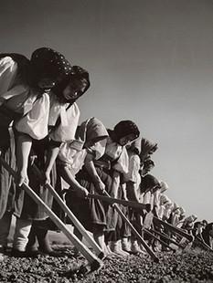 Bourke-White-Women-working-in-the-field-