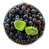 IMGBIN_blueberry-bubble-tea-popping-boba