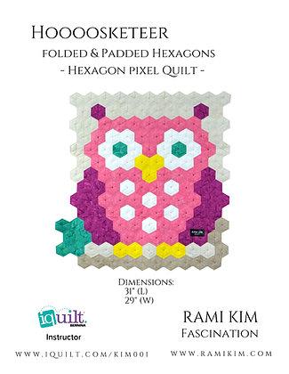 """""""Hoooosketeers"""" Quilt Pattern (Pink)"""