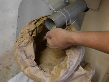 Pourquoi la farine issue d'un Moulin Astrié est-elle plus digeste ?