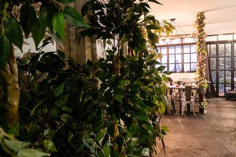 MSH_AhimsaRestaurant-68.jpg