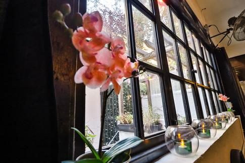 MSH_AhimsaRestaurant-8.jpg