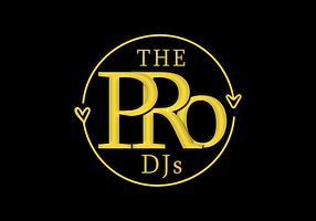 Professional wedding djs logo