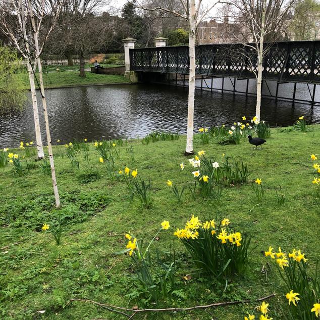Regents Park, London, UK