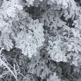 Santa Fe snowcap