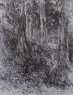 _Forest_#11.jpeg