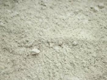 食品級矽藻素-250G