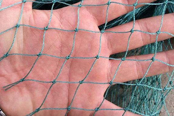 防鳥網-2米*10米-網眼2CM