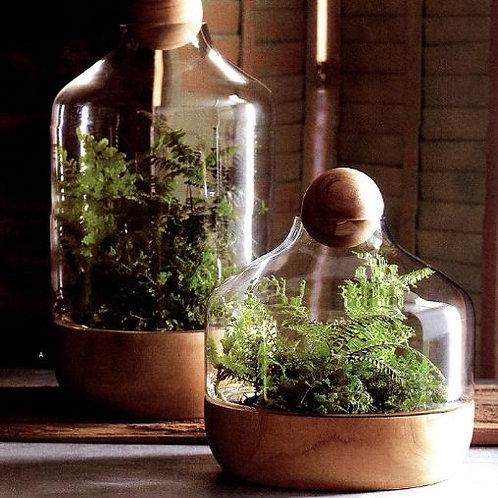 玻璃容器-玻璃花房圓球配木底座-2