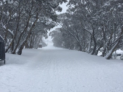Winter is in the Air: Skiing Review