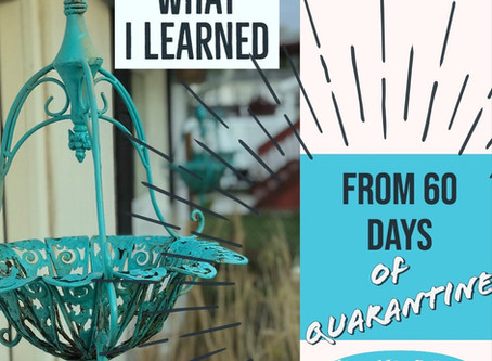 What I Learned From 60 Days of Quarantine