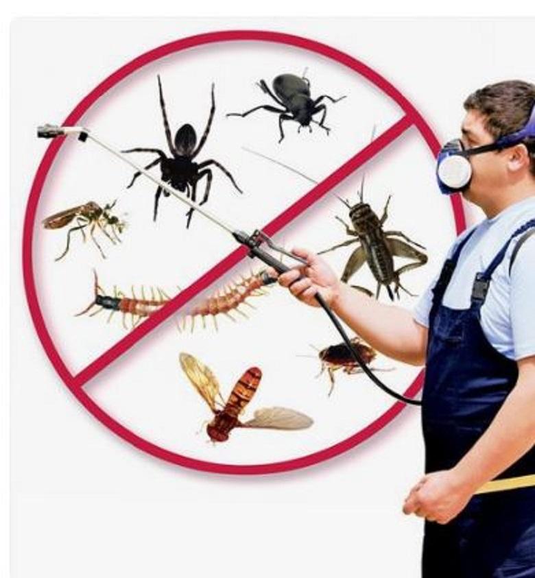 generic pest man resize4d
