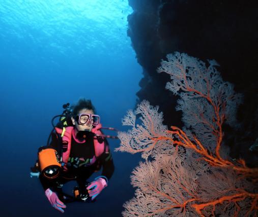 Dive Centre photo