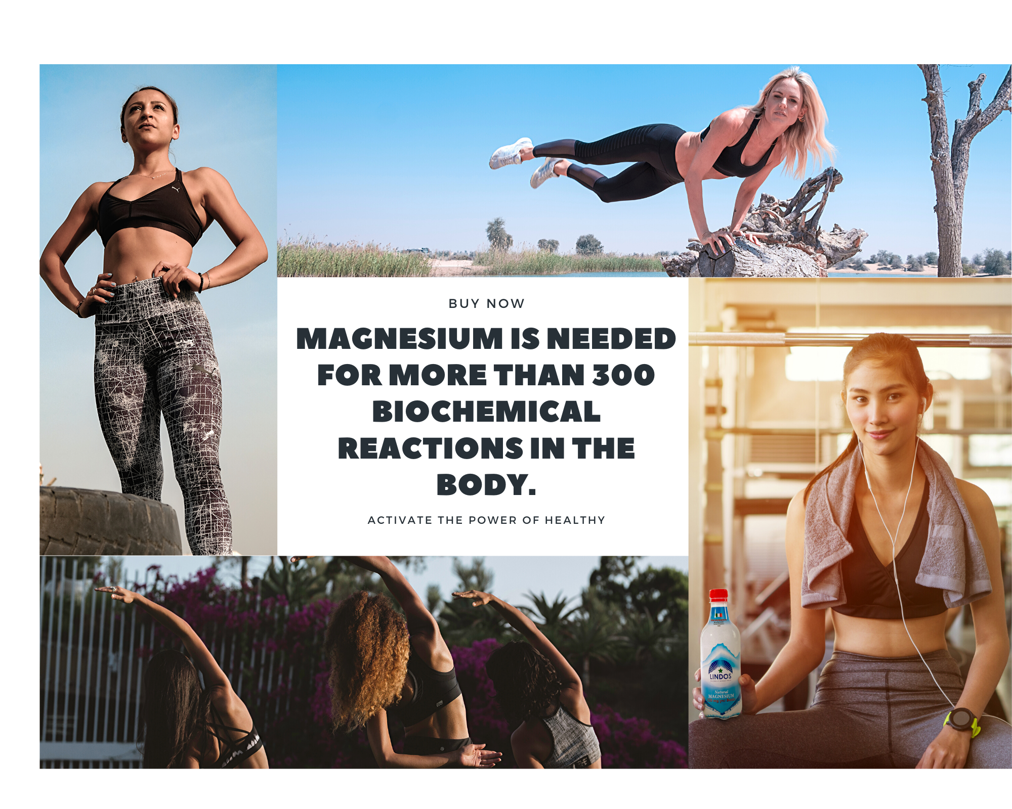 Magnesium is needed for more than 300 bi