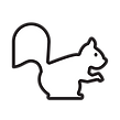 squirrel_icon_125819.png