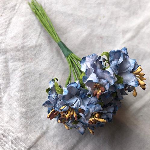 小花Bブルー12本