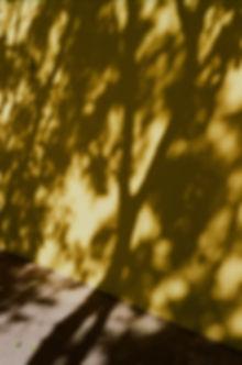 4_Sinnlichkeit_Licht - Schatten.jpg