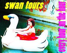 Swan tours.jpg