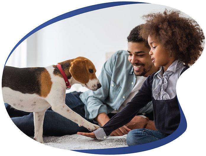 beagle dog PetExpo WODAC World of Dogs and Cats