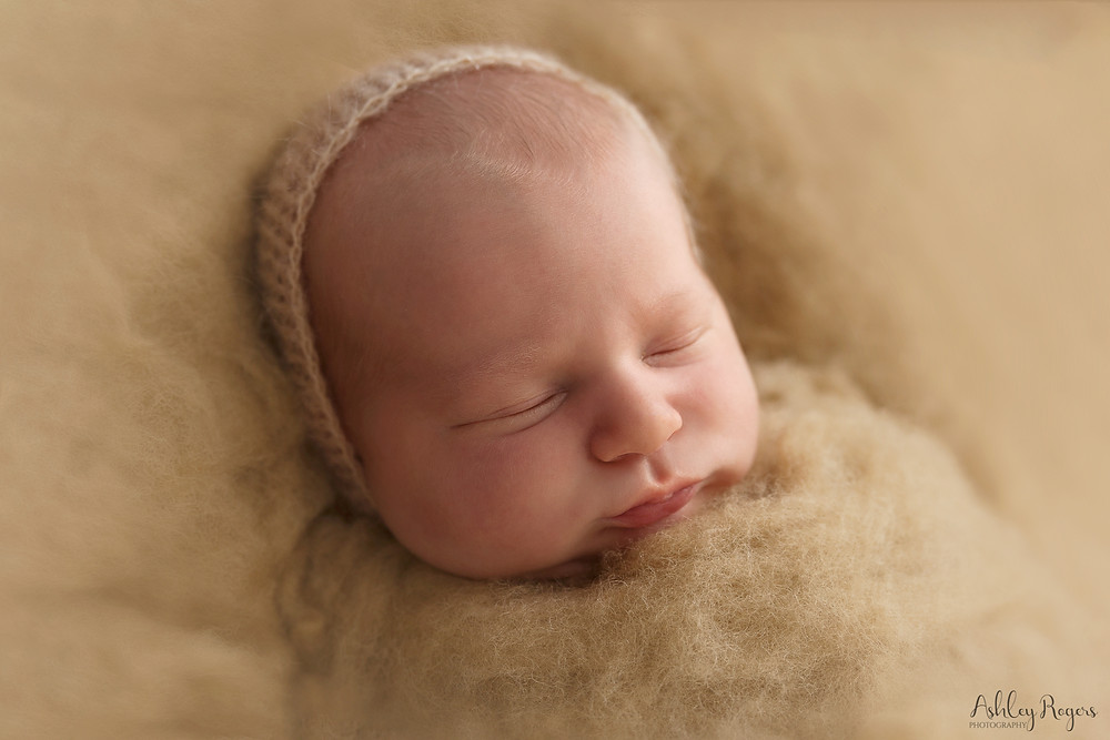 newborn in tan