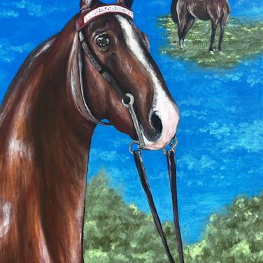 Homer Horse
