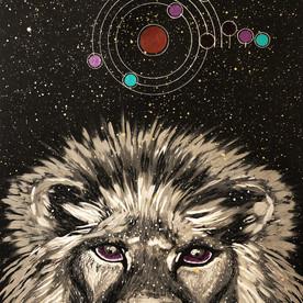 Cosmic Leo