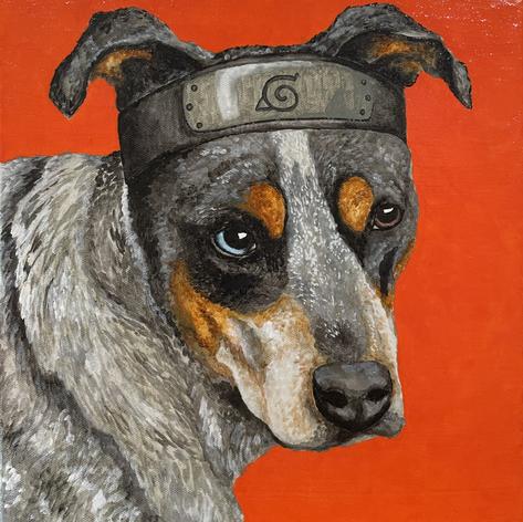 Naruto Pup