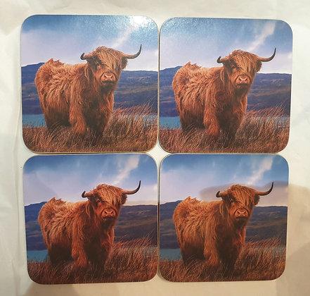 Coo Coasters (Set of 4)