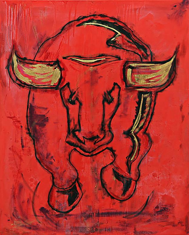 Torro Rosso