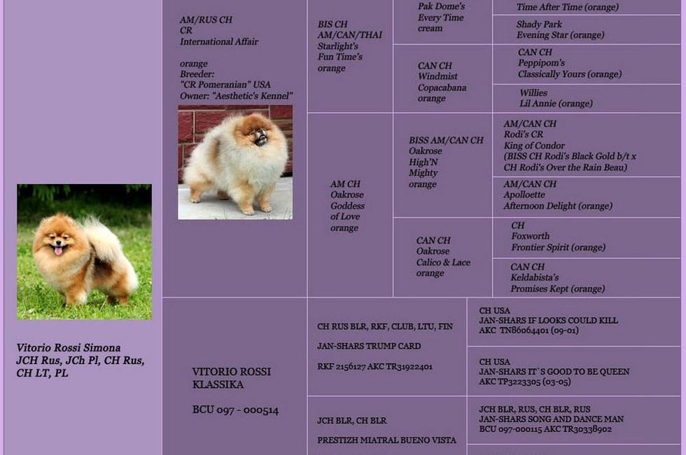 Dams pedigree