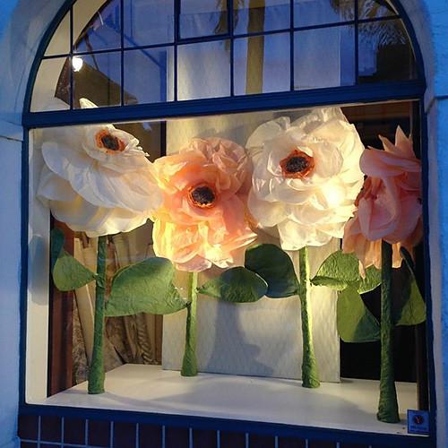 Retail Design- Window & Interior Display