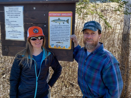 NFC Executive Director writes about critically endangered Atlantic salmon