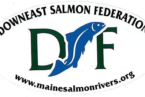DSF Bumper Sticker